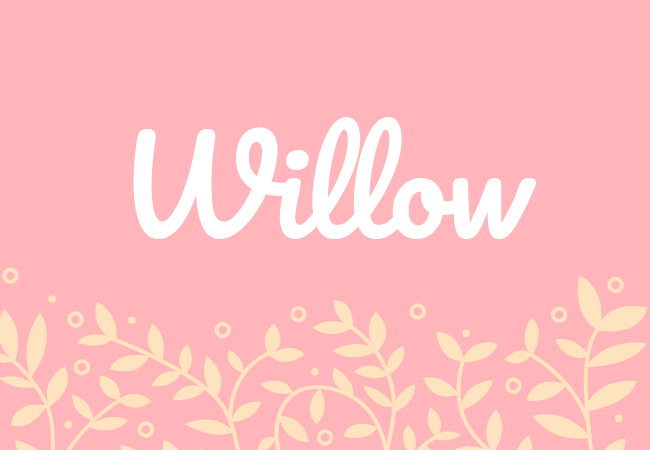 Willow most popular baby girl names