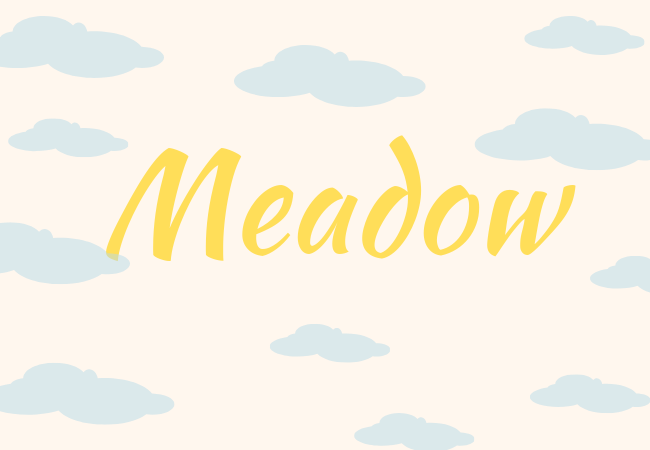 Summer baby names Meadow